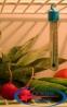 Термометр для холодильников «Айсберг», ТБ-225 - 1